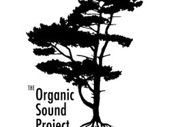 Image for The Organic Sound Project