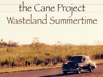 The Cane Project