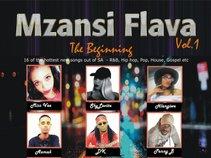 Mzansi Flava Vol. 1