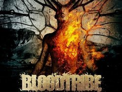 Image for Blood Tribe
