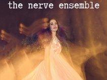 The Nerve Ensemble