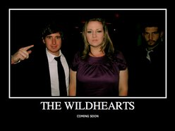 Image for The Wildhearts