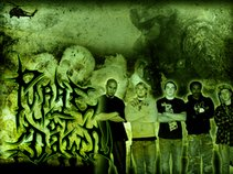 PURGE AT DAWN(Book Us!)(Official Page)