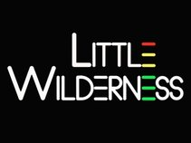 Little Wilderness