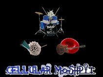 Cellular Moshpit