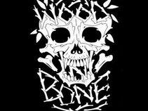 Wood N Bone
