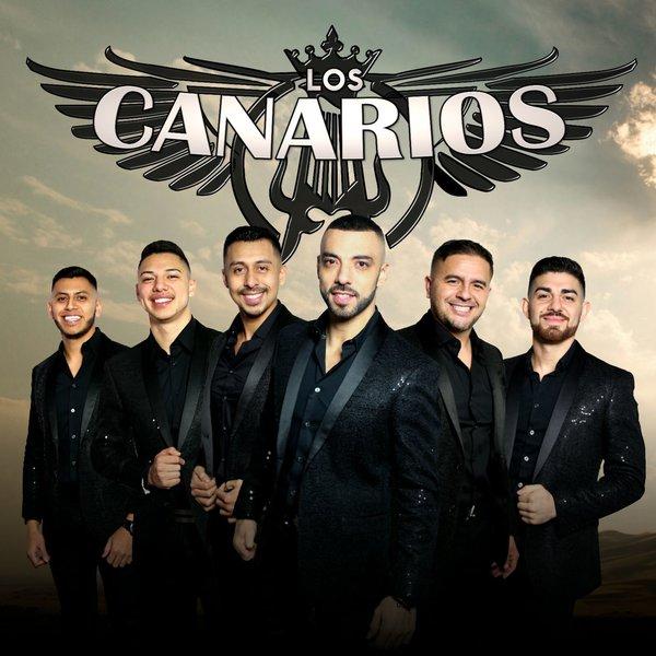 el wiri wiri los canarios de michoacan