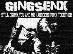 Image for GINGSENX (punk/hc/oi/d.i.y)