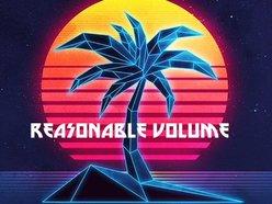 Image for Reasonable Volume