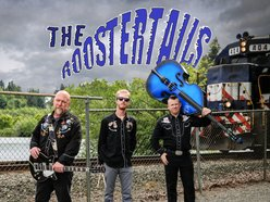 Image for The Roostertails