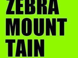 Image for Zebra Mountain