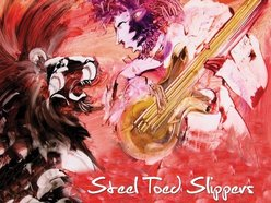 Image for Steel Toed Slippers