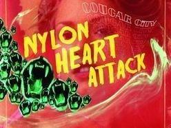 Image for Nylon Heart Attack