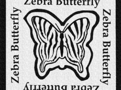 Image for Zebra Butterfly