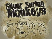 Silver Spring Monkeys