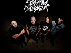 Image for Screaming Entombment