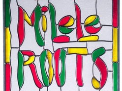 Image for Milele Roots