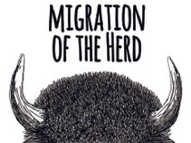 Migration of the Herd