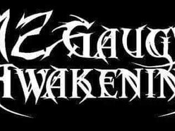 Image for 12 Gauge Awakening
