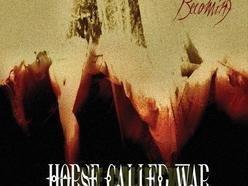 Horse Called War