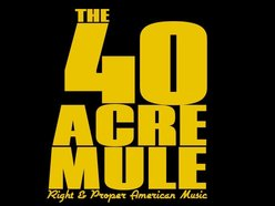 Image for The 40 Acre Mule