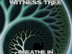 Image for Witness Tree