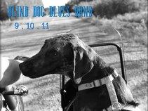 BLIND DOG BLUES BAND