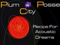 PLUM CITY POSSE