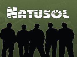 Image for Natusol