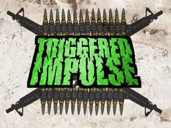 Image for Triggered Impulse