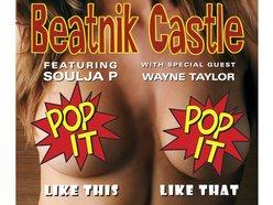 Image for Beatnik Castle