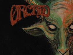 Image for ORCHID