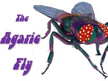 The Agaric Fly