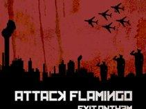 Attack Flamingo