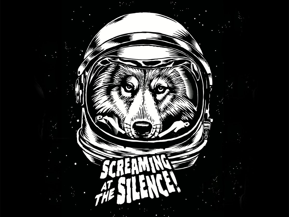 Image for Screaming At The Silence