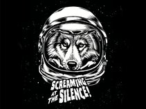 Screaming At The Silence