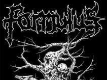 Formulus