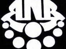 Ron Noyes Band