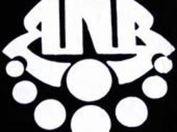 Image for Ron Noyes Band