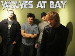 Image for Wolves At Bay