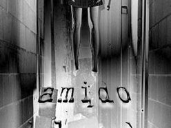 Image for Amido Black