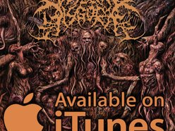 Image for Visceral Disgorge