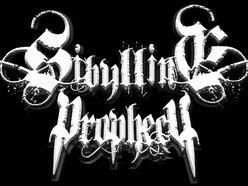 Sibylline Prophecy