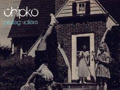 Image for chipko