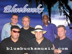 Image for Bluebucks