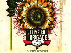 Jellyfish Brigade