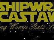 A Shipwreck A Castaway