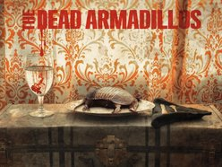 Image for The Dead Armadillos