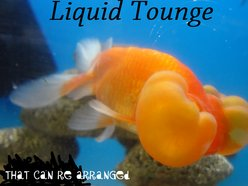 "Image for Liquid Tounge  (1 man band) ""the music of Dusty Hill"