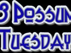 Image for 8 Possum Tuesday